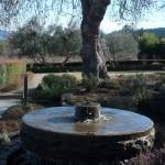 Goldeneye Fountain